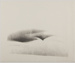 Untitled [Curved abstract forms]; Edelstein, David; undated; 1978:0144:0002