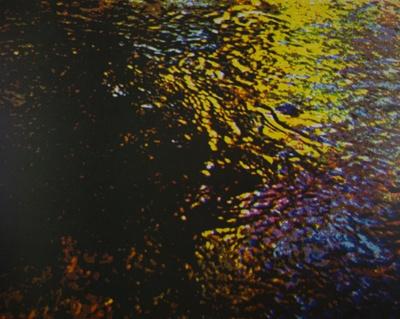 Brook In Spring; Hyde, Scott; 1978; 2000:0075:0003