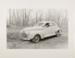 Untitled [Dog and car]; Hiser, Cheri; ca. 1970s; 1977:0094:0010