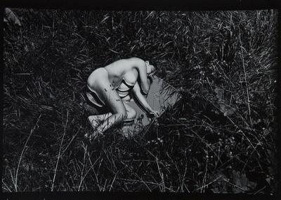Untitled [from Plastic Love Dream]; Mertin, Roger; ca. 1969; 1976:0031:0009