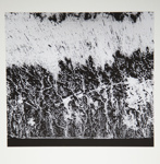 [Untitled, abstraction]; Wells, Alice; ca. 1965; 1972:0287:0186