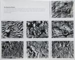 Untitled [An American Dream]; Gioberto, Sergio; undated; 2000:0094:0003