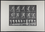 Running full speed. [M. 63]; Da Capo Press; Muybridge, Eadweard; 1887; 1972:0288:0015