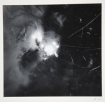 [Untitled, abstraction of a natural form]; Wells, Alice; ca. 1965; 1972:0287:0054