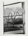 Metropolitan Museum of Art; McAdams, Dona Ann; 1987; 1987:0089:0008