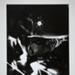 Ordeal by Roses #3; Hosoe, Eikoh; 1961; 1972:0252:0001