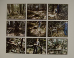 Woodland Rituals II; Hill, Edward; Bloom, Susan; Manual; 1977-1978; 2000:0172:0003
