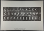 Putting the shot. [M. 310]; Da Capo Press; Muybridge, Eadweard; 1887; 1972:0288:0078