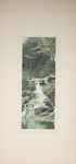 Untitled [Cascade]; Thompson, Fred; ca. 1900s; 1986:0026:0003