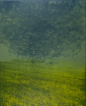 Untitled [Field]; Lyons, Joan; 1971; 2000:0066:0002