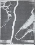 Foot; Sheridan, Sonia Landy; 1973; 1981:0117:0008