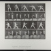 Base-ball; pitching [M. 273]; Da Capo Press; Muybridge, Eadweard; 1887; 1972:0288:0050