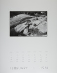 [Page Two of 1981 Calendar - February]; Coppola, Richard; 1981; 2000:0141:0002