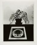 [untitled]; Uelsmann, Jerry; 1969; 1971:0127:0001