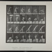 Throwing an iron disk. [M. 307]; Da Capo Press; Muybridge, Eadweard; 1887; 1972:0288:0075