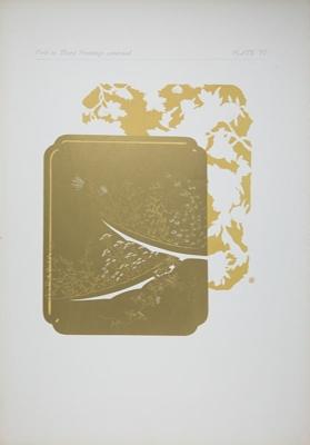 Plate VI; Audsley, George; 1883; 1978:0125:0007