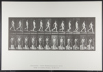 Descending incline, angle 1 in 4. [M. 113]; Da Capo Press; Muybridge, Eadweard; 1887; 1972:0288:0030