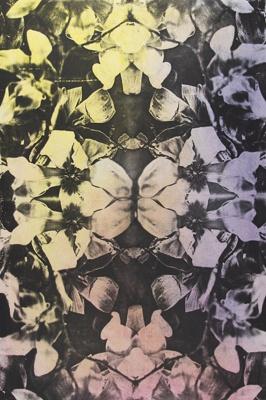 Untitled [Flowers]; Lyons, Joan; 1979; 1987:0090:0014