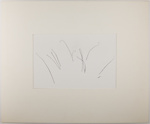 Untitled [Plants in snow]; Durrell, James; undated; 1982:0078:0002