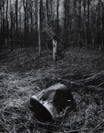 Untitled [Bucket]; Pond, David; undated; 2000:0116:0008