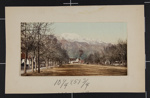 Pike's Peak Avenue, Colorado Springs; Detroit Photographic Co.; ca. 1898; 1981:0065:0009