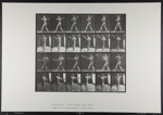 Base-ball; batting. [M. 274; Da Capo Press; Muybridge, Eadweard; 1887; 1972:0288:0051