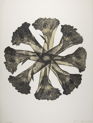 Untitled [Hands and flowers]; Lyons, Joan; 1978; 1987:0090:0021