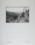 [Page Six of 1981 Calendar - June]; Coppola, Richard; 1981