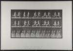 Running, two models. [M. 69]; Da Capo Press; Muybridge, Eadweard; 1887; 1972:0288:0021