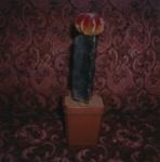 Untitled [Glass succulents]; Prez, James; ca. mid 2000s; 2008:0007:0056