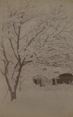 Last of the Season; Stanton, Henry; 1892; 1982:0015:0009