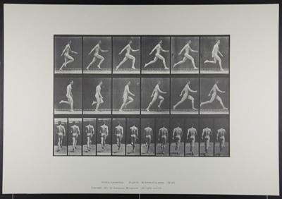 Running full speed. [M. 64]; Da Capo Press; Muybridge, Eadweard; 1887; 1972:0288:0016