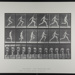 Running full speed. [M. 64]; Da Capo Press; Muybridge, Eadweard; 1887; 1972:0288:0016