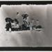 Untitled, [beach picnic] ; Wells, Alice; ca. 1970; 1976:0025:0006