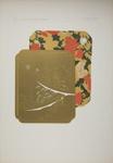 Plate XVIII; Audsley, George; 1883; 1978:0125:0019