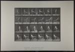 First ballet action. [M. 370]; Da Capo Press; Muybridge, Eadweard; 1887; 1972:0288:0099