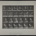 First ballet action. [M. 370]; Da Capo Press; Muybridge, Eadweard; 1887; 1972:0288:0099