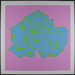 Decorative Rose; Kugler, Dennis; 1970; 1972:0096:0029