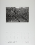 [Page One of 1981 Calendar - January]; Coppola, Richard; 1981; 2000:0141:0001