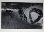[Untitled, natural abstraction]; Wells, Alice; ca. 1963; 1973:0134:9999