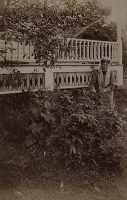 Untitled [Woman, porch, and bush]; Stanton, Henry; 1892; 1982:0015:0006