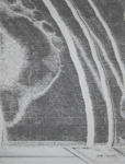 Foot; Sheridan, Sonia Landy; 1973; 1981:0117:0024