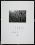 [Page seven of 1974 Calendar - July]; Coppola, Richard; 1974; 1974:0061:0007