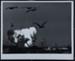 Vanguard Launching; Glinn, Burt; December 6, 1957; 1984:0032:0001