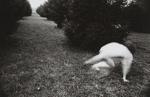 Untitled [Nude]; Mertin, Roger; undated; 2000:0068:0003