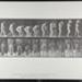 Stooping and lifting full demijohn to shoulder. [M. 218]; Da Capo Press; Muybridge, Eadweard; 1887; 1972:0288:0043