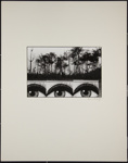 Untitled [Eye murals and trees]; Katz, Brian; ca. 1971; 1973:0002:0002
