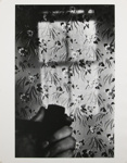 Untitled [Pipe and wallpaper]; Gibson, Ralph; ca. 1971; 1971:0671:0001
