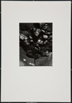 [abstract still life]; Cosindas, Marie; 1963; 1971:0029:0001