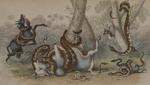 Untitled [Anaconda]; Stewart, James; ca. 1857; 1976:0012:0001